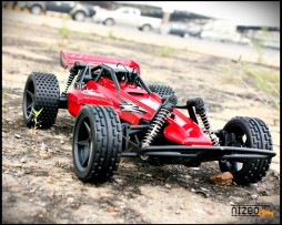 rc_offroad_14_8